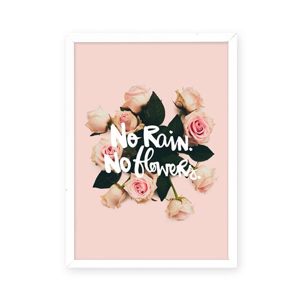 no_rain_no_flowers